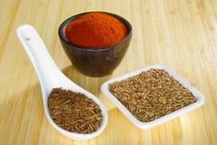 De Dille en de Karwij van de paprika Royalty-vrije Stock Afbeelding