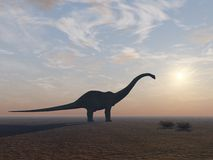 De Dinosaurus van Diplodocus op zijn Eind Stock Afbeeldingen