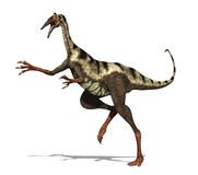 De Dinosaurus van Pelicanimimus Stock Fotografie