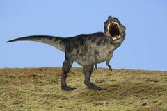 De dinosaurus van Rex van tyrannosaurussen royalty-vrije stock afbeeldingen