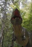 De dinosaurus van Rex van tyrannosaurussen Stock Afbeeldingen
