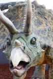 De dinosaurus van Triceratops Stock Afbeelding