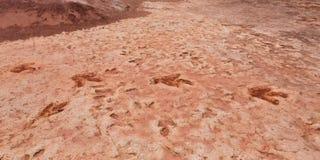 De dinosaurus volgt dichtbij Tuba City Utah royalty-vrije stock fotografie