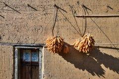 De diverse clusters van graan hangen buiten het venster Stock Afbeelding