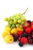 De diversiteit van het fruit Stock Afbeelding