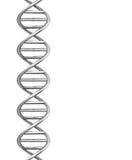 De DNA-schroef Royalty-vrije Stock Afbeelding