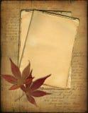 De documenten van Grunge en de herfstbladeren Stock Foto's