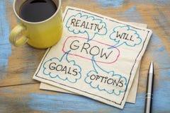 De doelstellingen, werkelijkheid, zullen en opties Royalty-vrije Stock Foto's