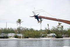 De dolfijn toont in Theater van het overzees in Islamorada Stock Fotografie