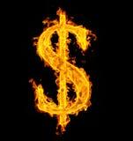 De dollar van de brand Stock Afbeeldingen