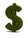 De Dollar van het gras Stock Foto's