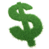 De dollar van het gras zingt. Stock Afbeelding