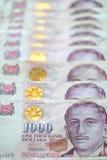 De dollar van Singapore Royalty-vrije Stock Afbeeldingen