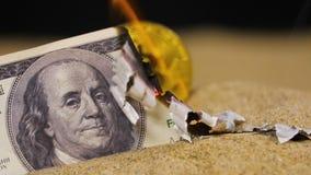 De dollarbrandwonden opent mening over bitcoin echt model stock video