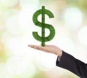 De dollarinstallatie van de handgreep Royalty-vrije Stock Afbeelding