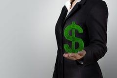 De dollarinstallatie van de handgreep Stock Afbeelding