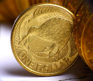 De dollarmunt van Nieuw Zeeland Royalty-vrije Stock Afbeelding
