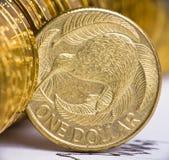 De dollarmunt van Nieuw Zeeland Stock Foto's