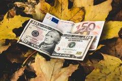 De dollars en de euro liggen op een geel gevallen de herfstblad, concep Royalty-vrije Stock Afbeelding
