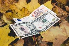 De dollars en de euro liggen op een geel gevallen de herfstblad, concept van Royalty-vrije Stock Foto's