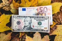 De dollars en de euro liggen op een geel gevallen de herfstblad, concept van Stock Foto