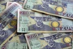 De Dollars van Namibië Stock Foto's