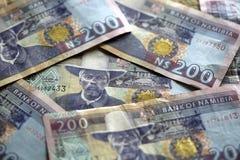 De Dollars van Namibië Royalty-vrije Stock Foto's