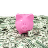 De dollarszaken van de gelddollar Royalty-vrije Stock Afbeeldingen