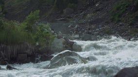 De dolle stroom van het de stroomversnellingwater van de bergstroom steenachtige met witte plonsen stock video