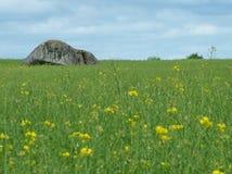 De dolmen van Brownshill in Ierland stock foto