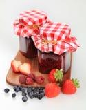 De domeinen van het fruit Stock Afbeeldingen