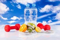 De domoren en de vruchten van de geschiktheid Stock Foto
