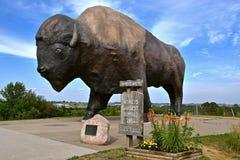 De Donder van Dakota, Werelden Grootste Buffels Stock Afbeelding