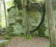 De Donderrotsen bij Allegany-het Park van de Staat stock foto