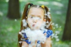 De donker-haired jonge vrouw blaast cottonwood pluis Royalty-vrije Stock Afbeelding