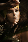 De donkerbruine dame van de schoonheid Stock Afbeelding
