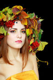 De donkerbruine Vrouw van de Herfst Stock Fotografie