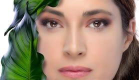 De Donkerbruine Vrouw van de schoonheid. De Behandeling van de huid. Kuuroord Royalty-vrije Stock Afbeelding