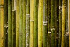 De donkere achtergrond van de bamboeomheining Royalty-vrije Stock Foto