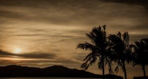 De donkere achtergrond van de zonsondergangaard Royalty-vrije Stock Afbeeldingen