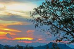 De donkere Bewolkte Schemering op Hemel, Mooie zonsondergang, betrekt kruis op onscherpe zonsondergang en Flam-boyant, de Vlamboo Royalty-vrije Stock Afbeeldingen