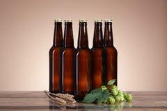 De donkere bier en het brouwen ingrediënten Royalty-vrije Stock Afbeeldingen