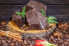 De donkere bonen van de chocoladekoffie, kaneel en steranijsplant Stock Fotografie