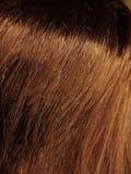 De donkere bruine achtergrond van de haartextuur Royalty-vrije Stock Fotografie