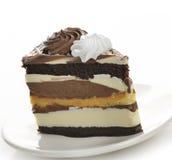 De donkere en Witte Cake van de Chocolade Stock Afbeeldingen
