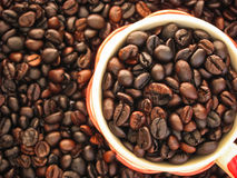 De donkere espresso geroosterde macromening van koffiebonen Stock Afbeeldingen