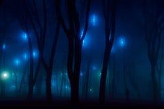De donkere geheimzinnigheid decoratie van het stadspark in mist Royalty-vrije Stock Afbeelding