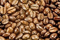 De donkere Geroosterde Bonen van de Koffie Royalty-vrije Stock Afbeeldingen