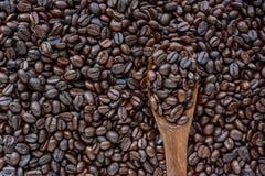 De donkere Geroosterde Bonen van de Koffie Stock Foto