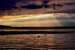 De donkere gouden zonsondergang van Nice op water Royalty-vrije Stock Afbeelding